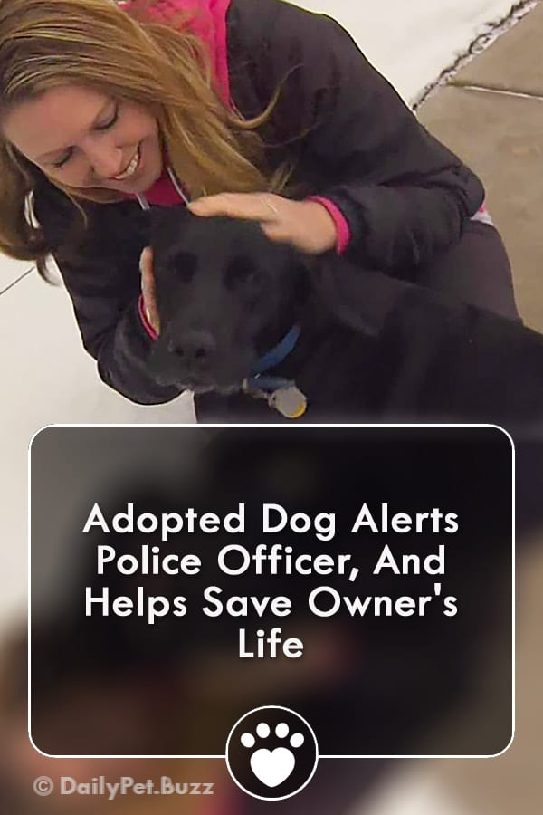 Adopted Dog Alerts Police Officer, And Helps Save Owner\'s Life