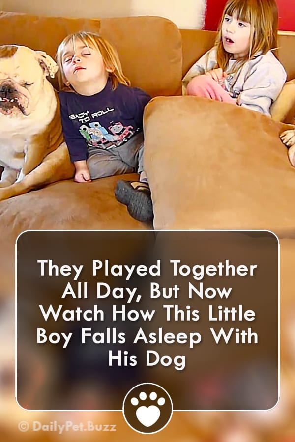 They Played Together All Day, But Now Watch How This Little Boy Falls Asleep With His Dog