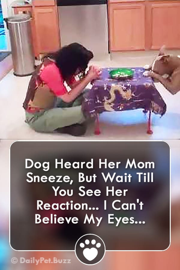 Dog Heard Her Mom Sneeze, But Wait Till You See Her Reaction... I Can\'t Believe My Eyes...