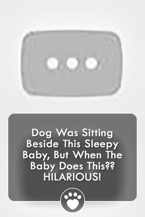 Dog Was Sitting Beside This Sleepy Baby, But When The Baby Does This?? HILARIOUS!