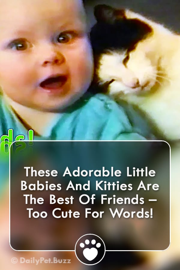 These Adorable Little Babies And Kitties Are The Best Of Friends – Too Cute For Words!