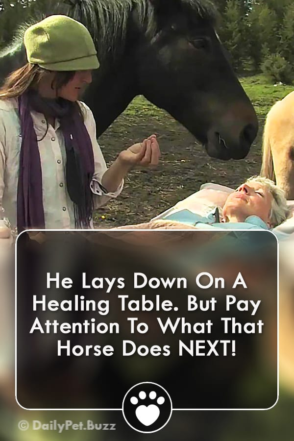 He Lays Down On A Healing Table. But Pay Attention To What That Horse Does NEXT!