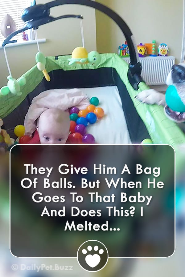 They Give Him A Bag Of Balls. But When He Goes To That Baby And Does This? I Melted...
