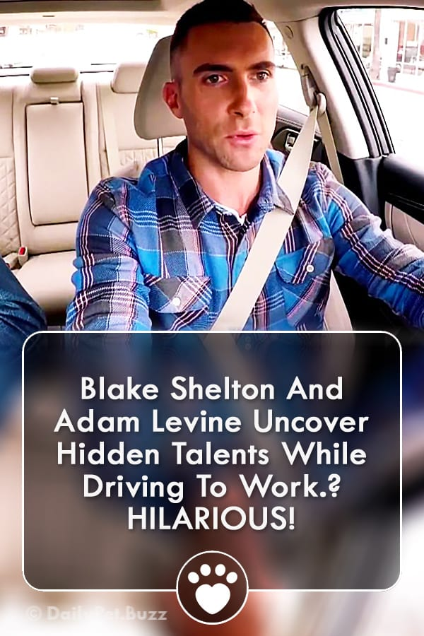 Blake Shelton And Adam Levine Uncover Hidden Talents While Driving To Work? HILARIOUS!