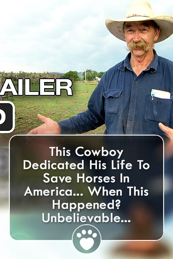 This Cowboy Dedicated His Life To Save Horses In America... When This Happened? Unbelievable...