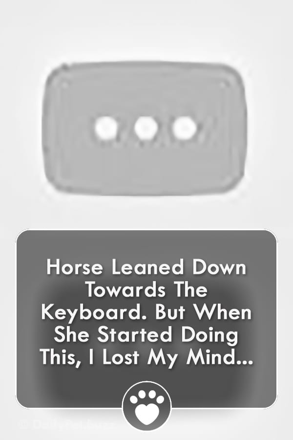 Horse Leaned Down Towards The Keyboard. But When She Started Doing This, I Lost My Mind...