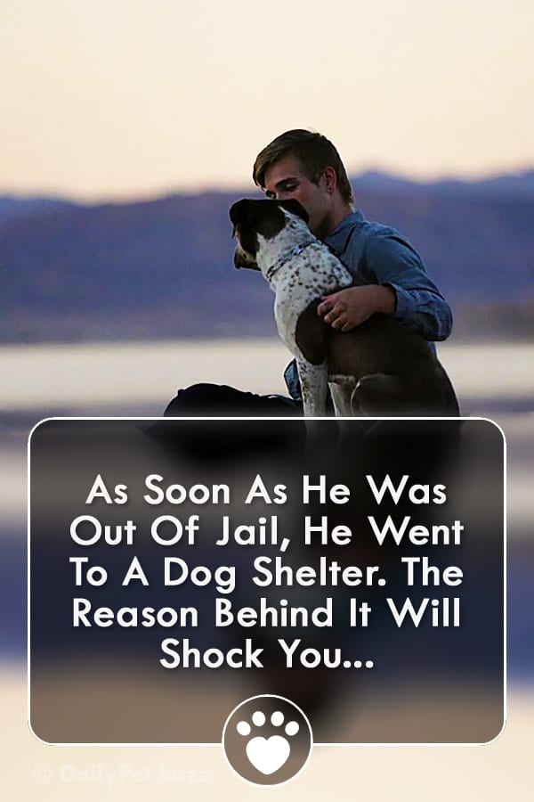 As Soon As He Was Out Of Jail, He Went To A Dog Shelter. The Reason Behind It Will Shock You...