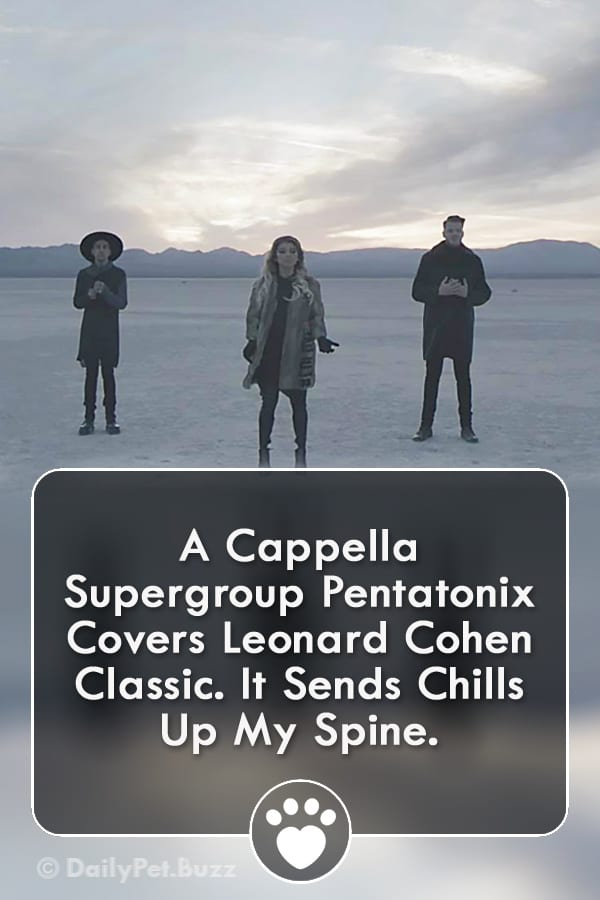 A Cappella Supergroup Pentatonix Covers Leonard Cohen Classic. It Sends Chills Up My Spine.