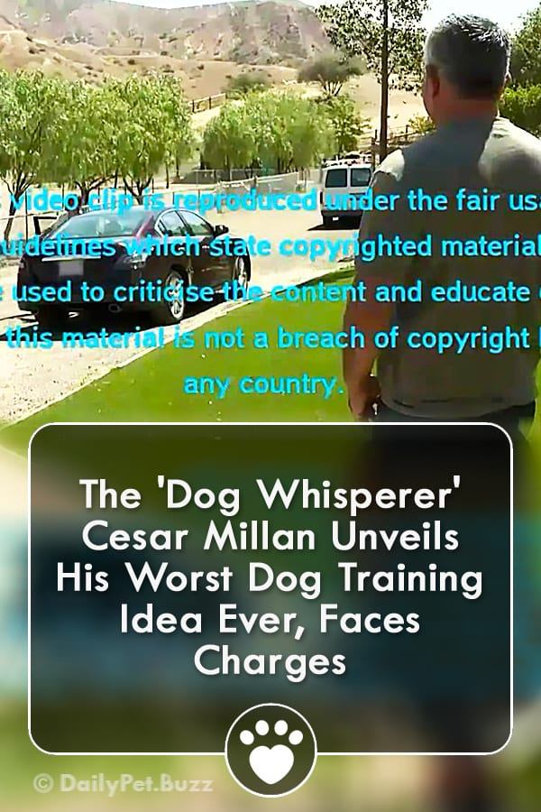 The \'Dog Whisperer\' Cesar Millan Unveils His Worst Dog Training Idea Ever, Faces Charges