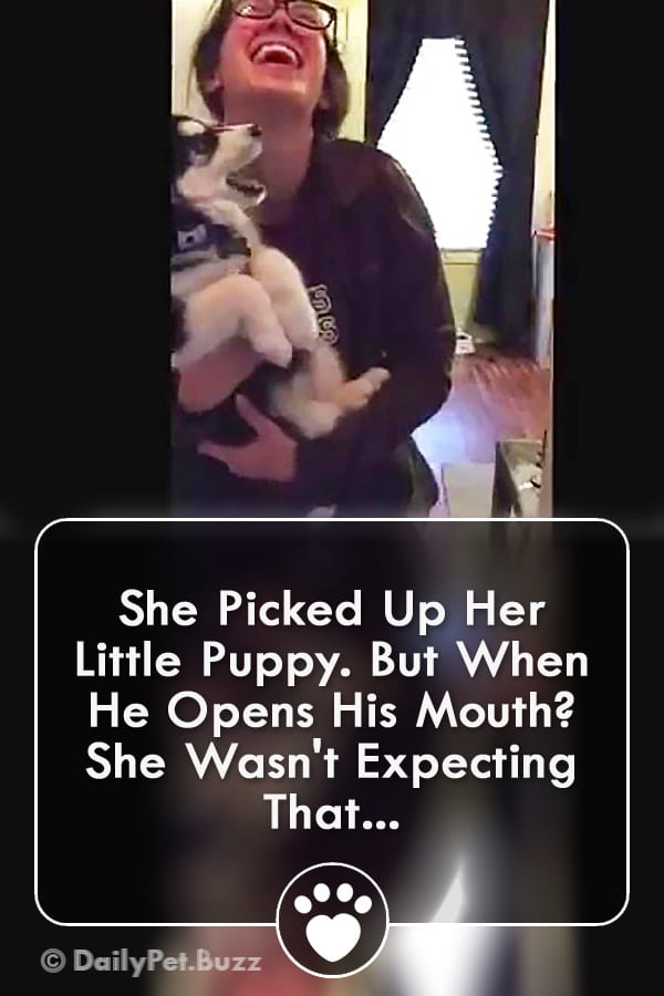 She Picked Up Her Little Puppy. But When He Opens His Mouth? She Wasn\'t Expecting That...