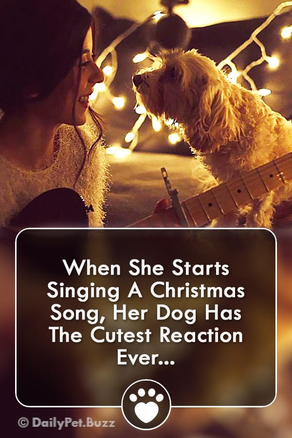 When She Starts Singing A Christmas Song, Her Dog Has The Cutest Reaction Ever...