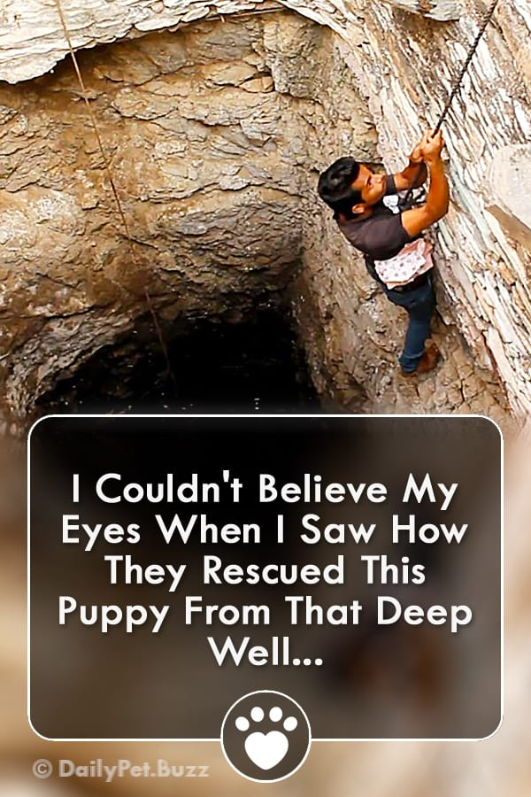 I Couldn\'t Believe My Eyes When I Saw How They Rescued This Puppy From That Deep Well...