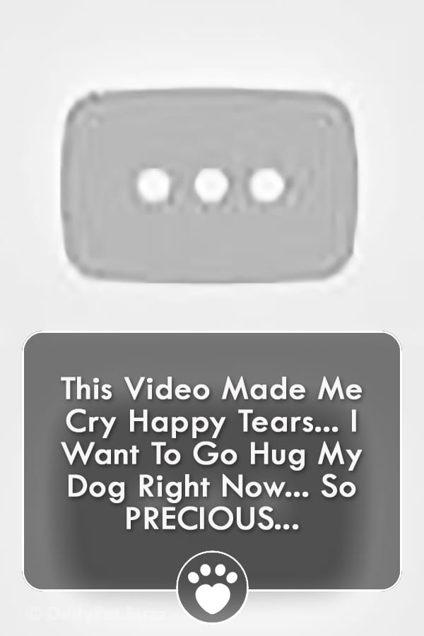 This Video Made Me Cry Happy Tears... I Want To Go Hug My Dog Right Now... So PRECIOUS...