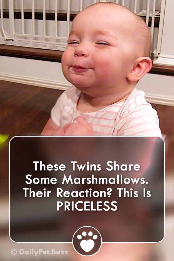 These Twins Share Some Marshmallows. Their Reaction? This Is PRICELESS