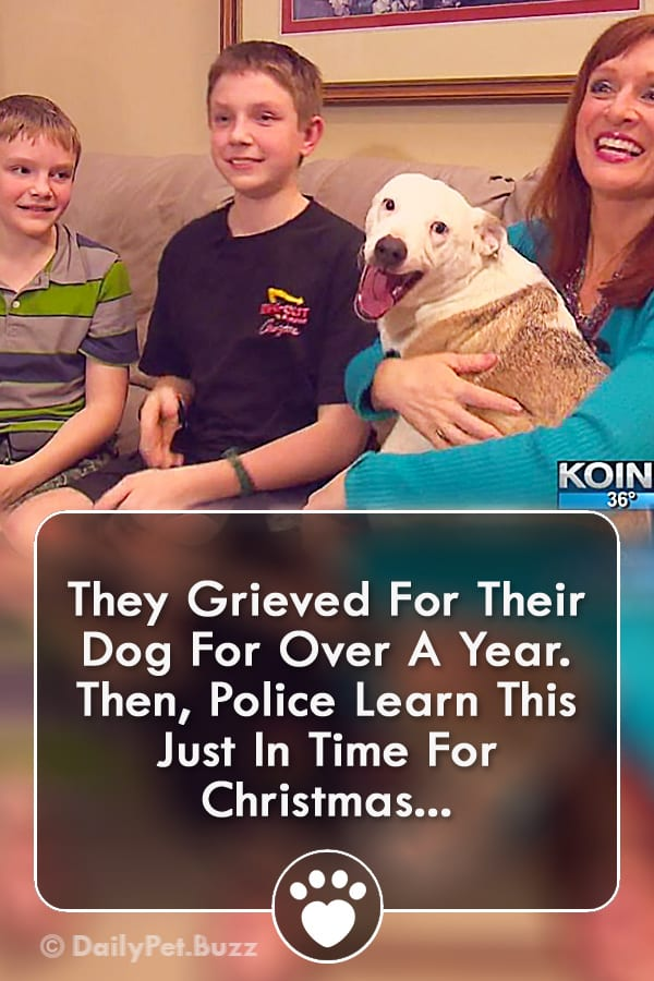 They Grieved For Their Dog For Over A Year. Then, Police Learn This Just In Time For Christmas...