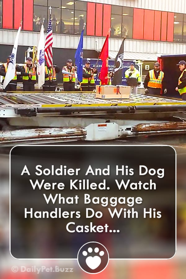 A Soldier And His Dog Were Killed. Watch What Baggage Handlers Do With His Casket...