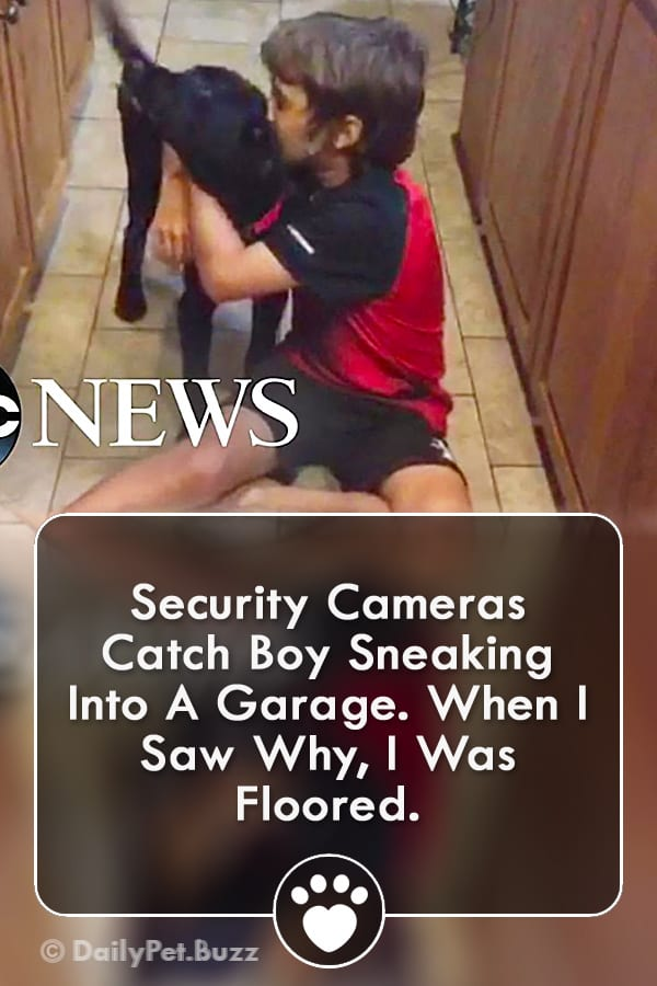 Security Cameras Catch Boy Sneaking Into A Garage. When I Saw Why, I Was Floored.