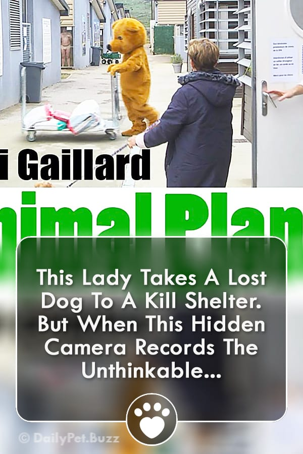 This Lady Takes A Lost Dog To A Kill Shelter. But When This Hidden Camera Records The Unthinkable...