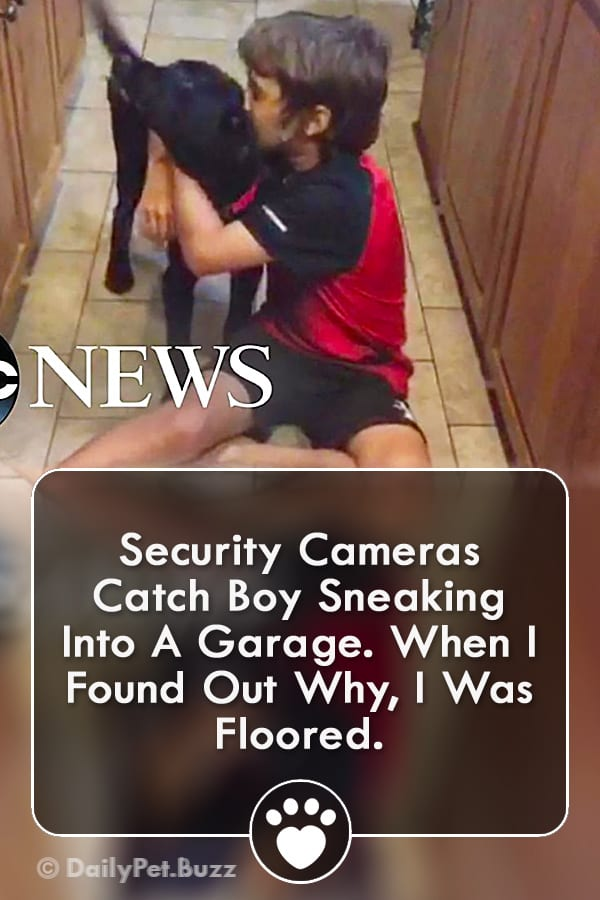 Security Cameras Catch Boy Sneaking Into A Garage. When I Found Out Why, I Was Floored.