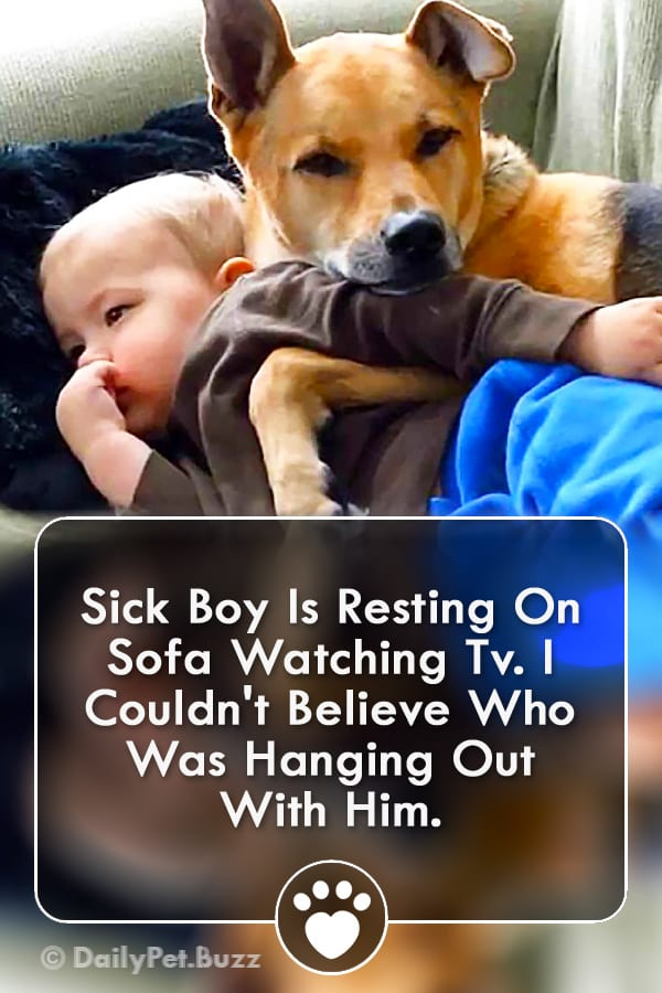 Sick Boy Is Resting On Sofa Watching Tv. I Couldn\'t Believe Who Was Hanging Out With Him.