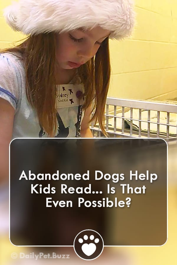 Abandoned Dogs Help Kids Read... Is That Even Possible?