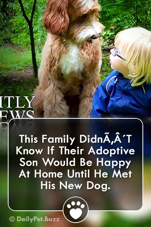 This Family Didn´T Know If Their Adoptive Son Would Be Happy At Home Until He Met His New Dog.