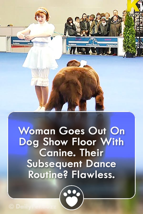 Woman Goes Out On Dog Show Floor With Canine. Their Subsequent Dance Routine? Flawless.