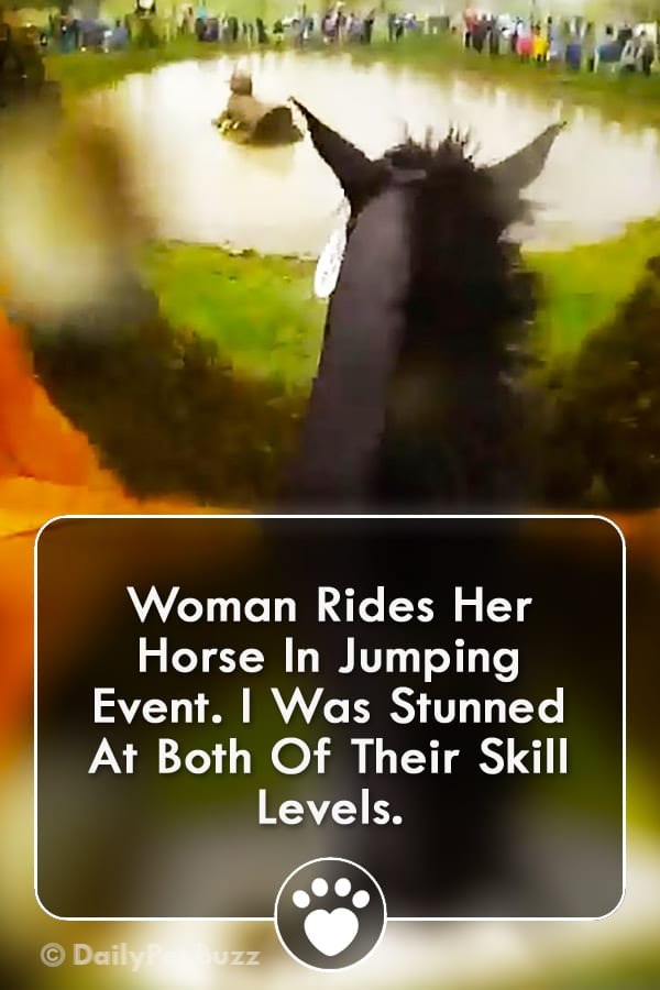 Woman Rides Her Horse In Jumping Event. I Was Stunned At Both Of Their Skill Levels.