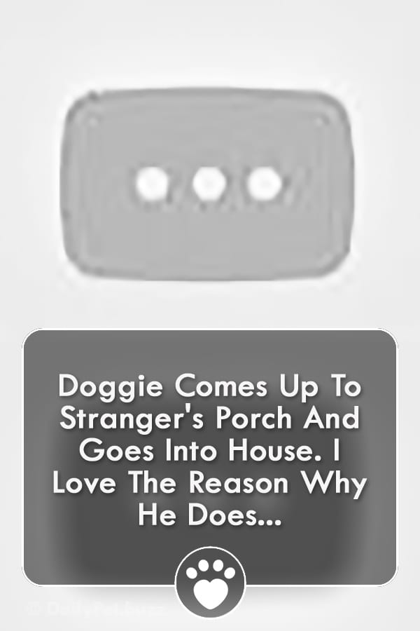 Doggie Comes Up To Stranger\'s Porch And Goes Into House. I Love The Reason Why He Does...