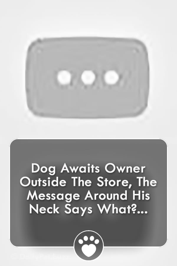 Dog Awaits Owner Outside The Store, The Message Around His Neck Says What?...