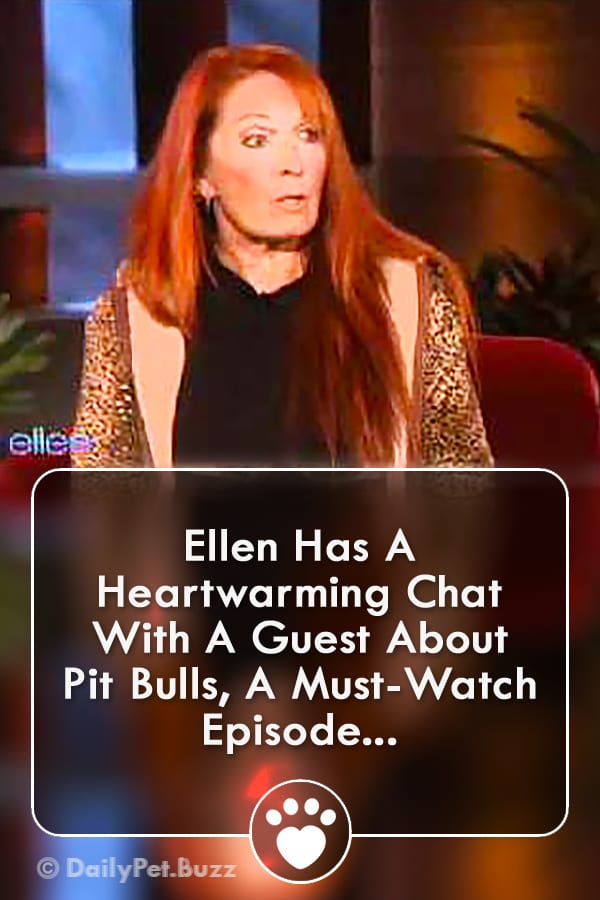Ellen Has A Heartwarming Chat With A Guest About Pit Bulls, A Must-Watch Episode...