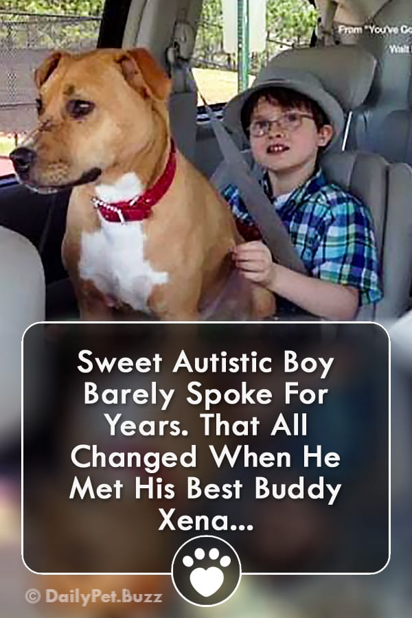 Sweet Autistic Boy Barely Spoke For Years. That All Changed When He Met His Best Buddy Xena...