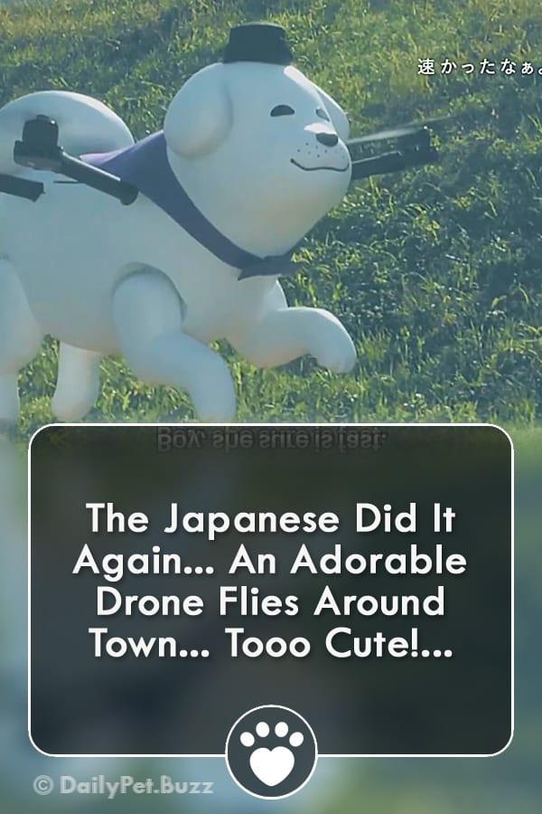 The Japanese Did It Again... An Adorable Drone Flies Around Town... Tooo Cute!...