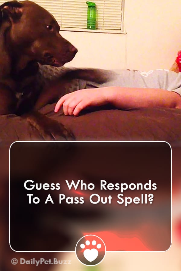 Guess Who Responds To A Pass Out Spell?