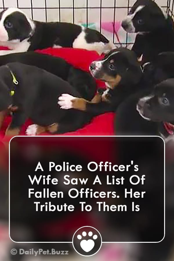 A Police Officer\'s Wife Saw A List Of Fallen Officers. Her Tribute To Them Is