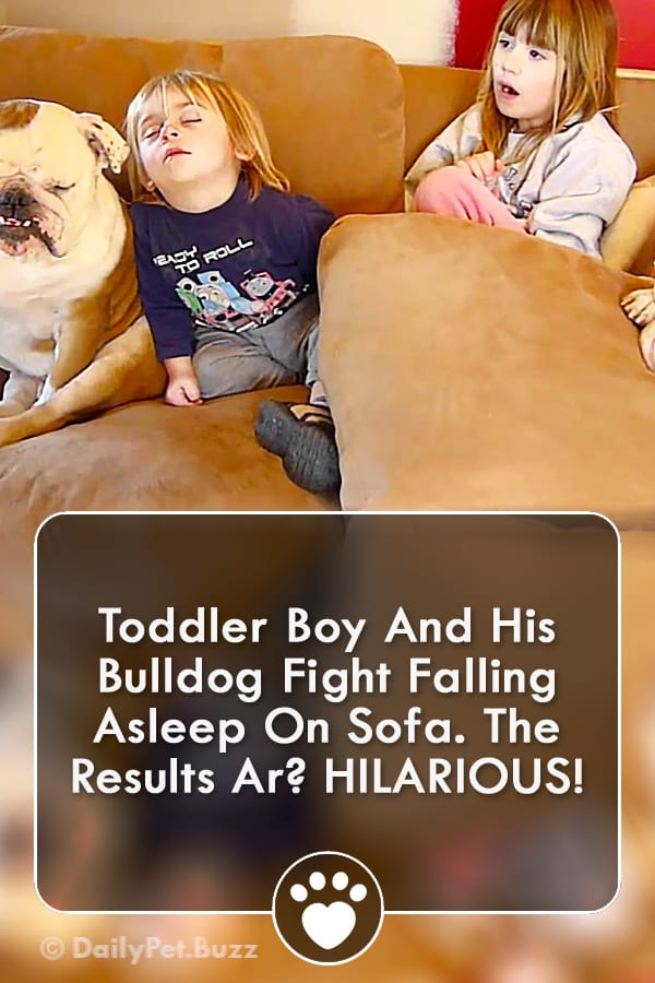 Toddler Boy And His Bulldog Fight Falling Asleep On Sofa. The Results Ar? HILARIOUS!