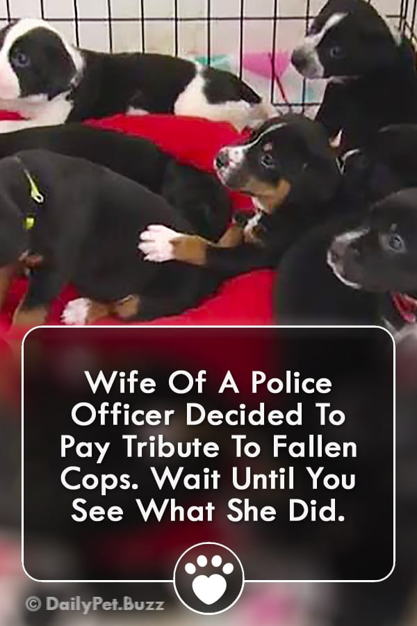 Wife Of A Police Officer Decided To Pay Tribute To Fallen Cops. Wait Until You See What She Did.
