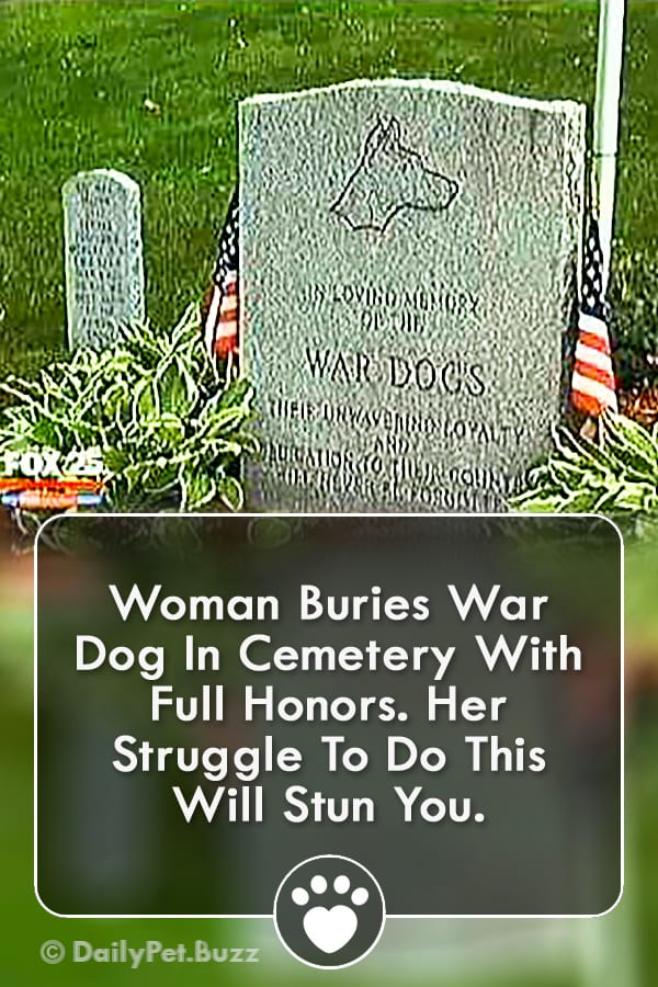 Woman Buries War Dog In Cemetery With Full Honors. Her Struggle To Do This Will Stun You.