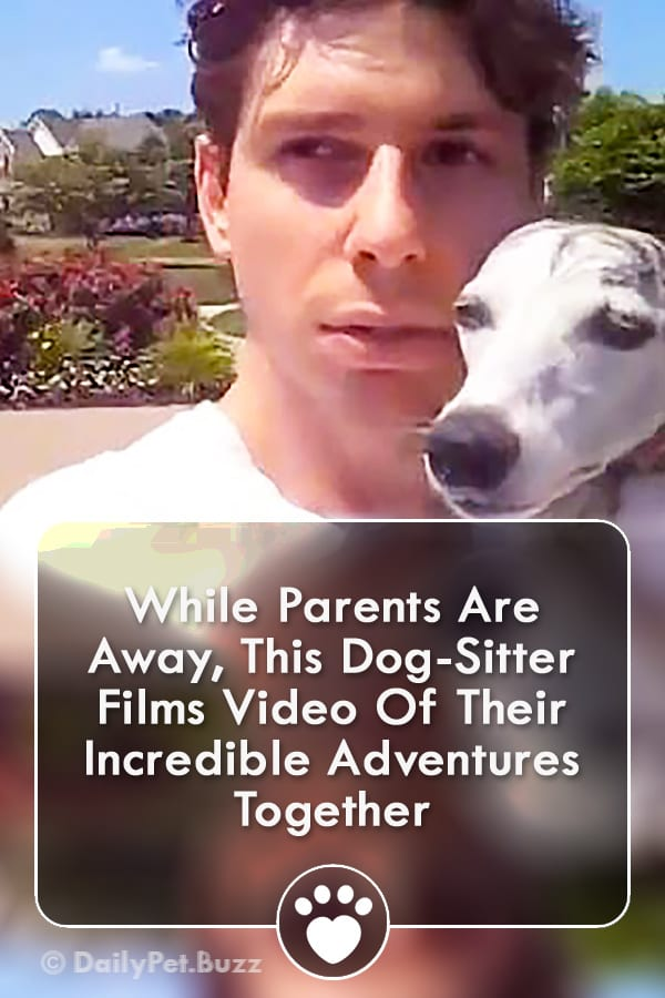 While Parents Are Away, This Dog-Sitter Films Video Of Their Incredible Adventures Together