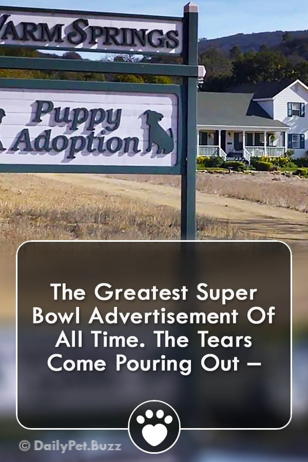 The Greatest Super Bowl Advertisement Of All Time. The Tears Come Pouring Out –