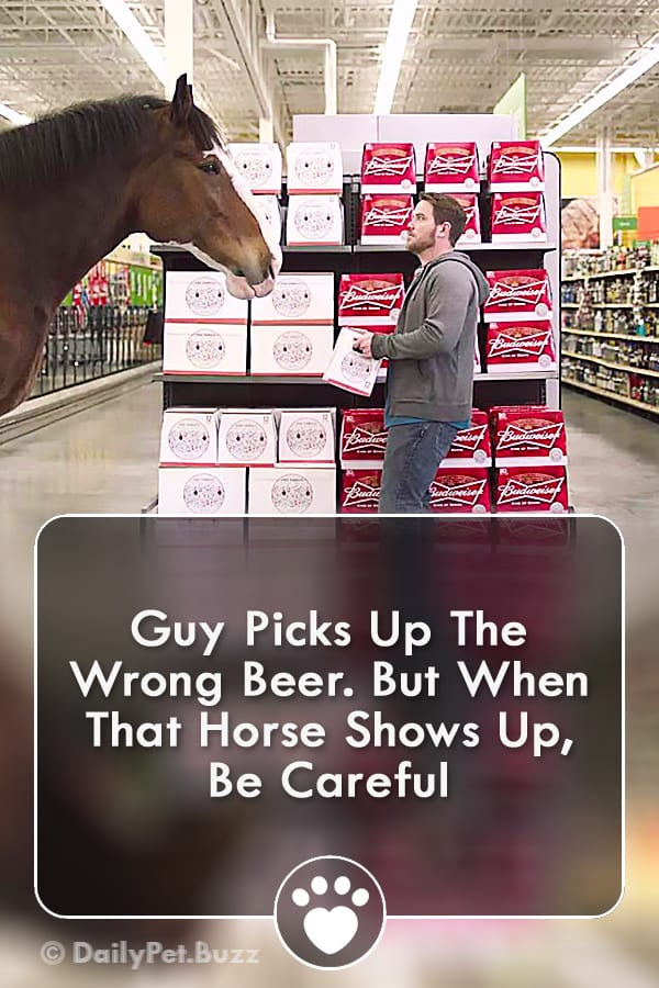 Guy Picks Up The Wrong Beer. But When That Horse Shows Up, Be Careful