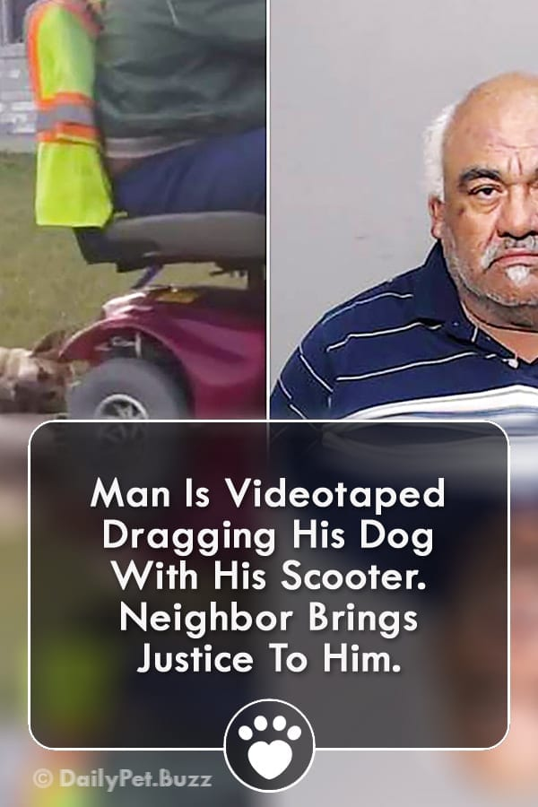 Man Is Videotaped Dragging His Dog With His Scooter. Neighbor Brings Justice To Him.