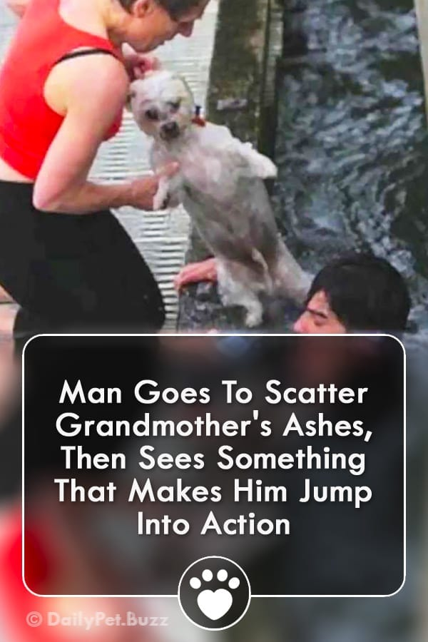 Man Goes To Scatter Grandmother\'s Ashes, Then Sees Something That Makes Him Jump Into Action