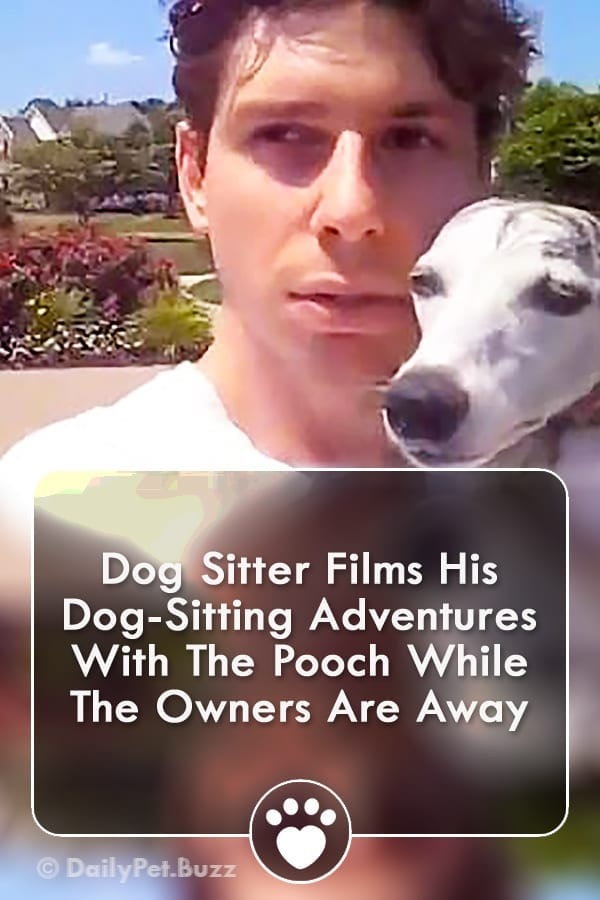 Dog Sitter Films His Dog-Sitting Adventures With The Pooch While The Owners Are Away