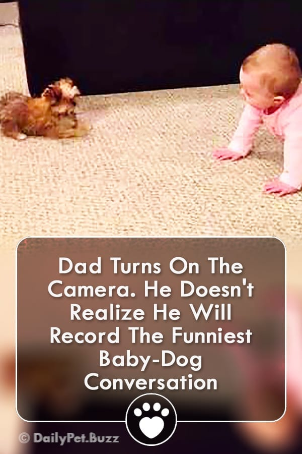 Dad Turns On The Camera. He Doesn\'t Realize He Will Record The Funniest Baby-Dog Conversation