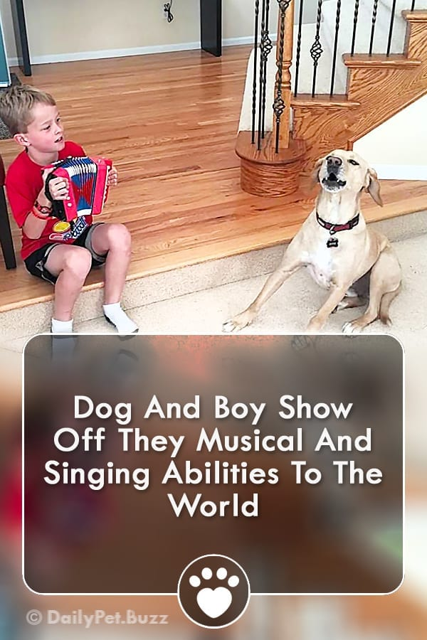 Dog And Boy Show Off They Musical And Singing Abilities To The World