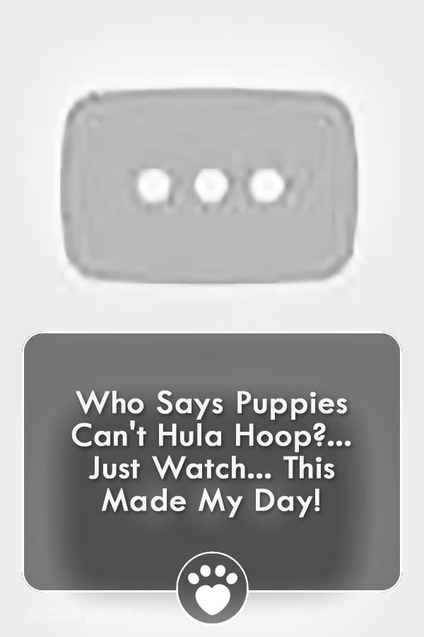 Who Says Puppies Can\'t Hula Hoop?... Just Watch... This Made My Day!