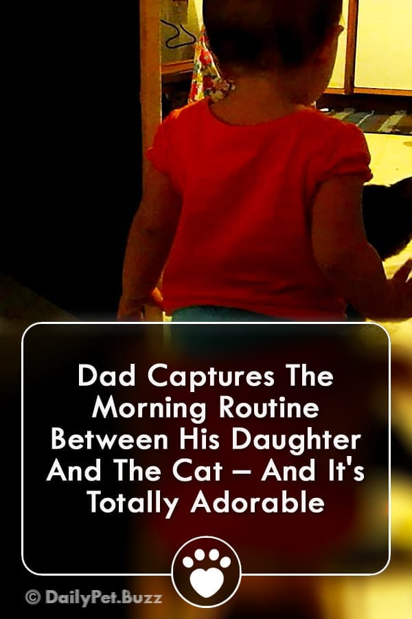 Dad Captures The Morning Routine Between His Daughter And The Cat – And It\'s Totally Adorable