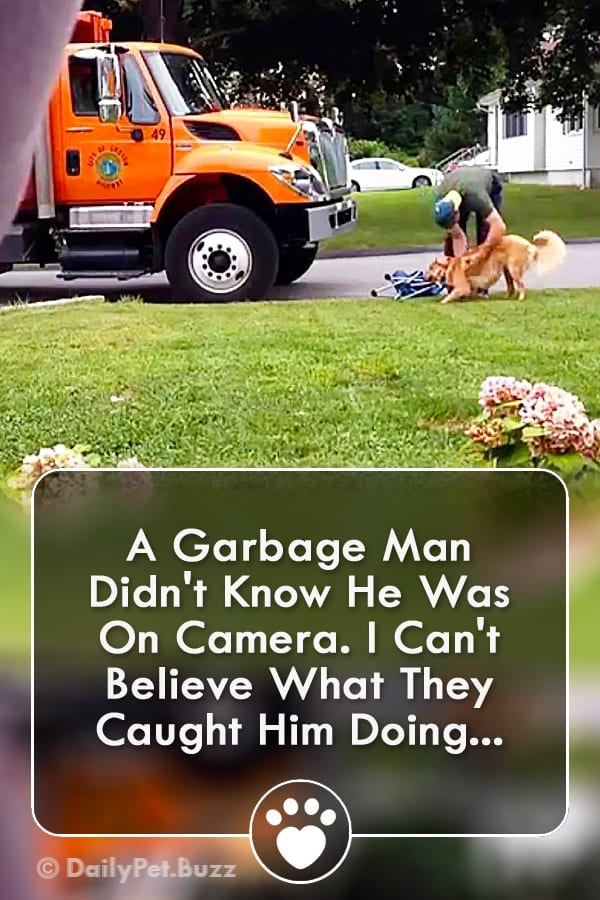 A Garbage Man Didn\'t Know He Was On Camera. I Can\'t Believe What They Caught Him Doing...