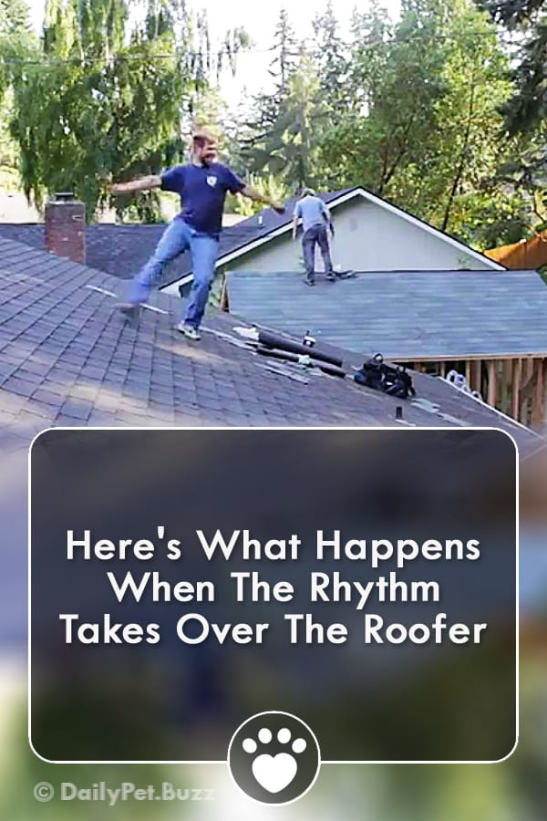 Here\'s What Happens When The Rhythm Takes Over The Roofer